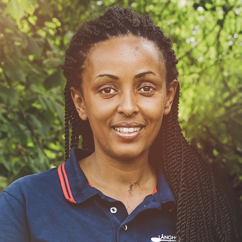 Samra Gonfa